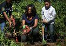 Tin thế giới - Đệ nhất phu nhân Mỹ thu hoạch rau tại Nhà trắng
