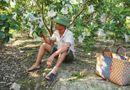 Chuyện làng sao - Gia đình Lệ Rơi lao đao vì chủ nợ nhao nhao đến đòi