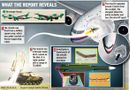 Tin thế giới - Hành khách máy bay MH17 vẫn sống sót khoảng 90 giây sau vụ nổ