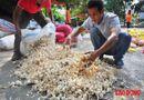 Thị trường - Hành, tỏi Lý Sơn bị thương lái ép giá: Điêu đứng vùng tỏi