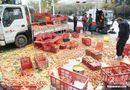 Cộng đồng mạng - Cảm động người dân giúp đỡ lái xe bị đổ hàng ngàn quả trứng giữa đường