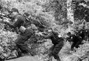 """An ninh - Hình sự - Cuộc đấu súng giữa đại ngàn bắt tướng cướp tự xưng là """"chúa tể rừng xanh"""""""