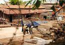 Nóng trong tuần - Bộ Công an rầm rộ truy quét gỗ lậu tại Đắk Lắk