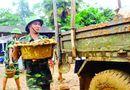 Miền Trung - Nỗ lực ổn định cuộc sống cho người dân ở địa phương tâm lũ
