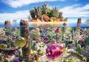 Tin thế giới - Chiêm ngưỡng những kiệt tác phong cảnh từ rau củ quả