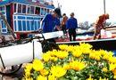 Tin trong nước - Hàng nghìn ngư dân miền Trung đón tết trên biển