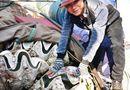Tin trong nước - Sò tượng dài 1m giá 15 triệu đồng ở Quảng Ngãi
