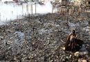 Tin thế giới - Phillipines: Một ngọn nến thiêu rụi hàng nghìn ngôi nhà
