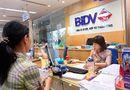 """Thị trường - BIDV có nguy cơ """"mất trắng"""" gần 5.600 tỷ đồng"""