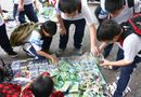 Hiện trường - 5 loại đồ chơi Trung Quốc độc hại nhất với trẻ
