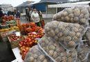 """Tin thế giới - """"Ăn miếng, trả miếng: Nga cấm nhập khẩu rau quả Ba Lan"""