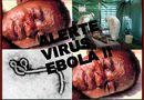Tin thế giới - Đại dịch Ebola bùng phát là do nghèo khổ, y đức