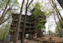 Hiện trường - Chiêm ngưỡng nhà cây tuyệt đẹp khắp thế giới