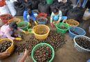 Ăn - Chơi - Những chợ đặc biệt chỉ có trong mùa lũ