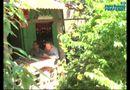 Video-Hot - Đồng Tháp: Tra tấn trái pháp luật một bé 12 tuổi nhập viện
