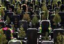 Tin thế giới - Quan chức Trung Quốc mua xác người để đạt chỉ tiêu hỏa táng
