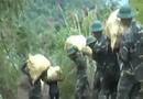 An ninh TV - Lạng Sơn: Bắt hàng lậu tiền tỷ qua biên giới