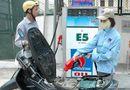 Thị trường - Xăng sinh học E5 có gây hỏng xe?