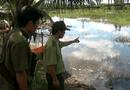 Tin trong nước - Khẩn trương săn lùng cá sấu sổng chuồng ra hồ Trị An