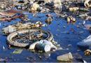 Sản phẩm - Dịch vụ - Làng ung thư: hậu quả của ô nhiễm môi trường