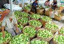 Thị trường - Trung Quốc nhập khẩu khoảng 70% rau quả của Việt Nam