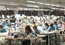 Thị trường - Lao động ngành dệt may đã tăng 12% lương