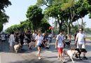 Sự kiện & Luật sư - Dắt chó đi dạo hồ Hoàn Kiếm có thể bị phạt