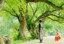 Tin tức giải trí - Người tình ánh trăng tập cuối: IU sinh con cho Lee Jun Ki, trở lại thời hiện đại