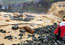 Tin trong nước - Tuyến đường Nha Trang - Đà Lạt bị tê liệt do sạt lở đất đá