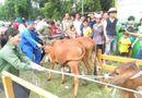 Gia đình - Tình yêu - Biến cố đau thương của gia đình người dân tộc Thái ở Nghệ An