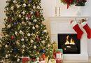Đời sống - Bật mí về nguồn gốc cây thông Noel trong lễ Giáng Sinh
