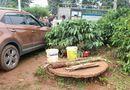 Tin trong nước - Cứu con gái 3 tuổi rơi xuống giếng, cả hai mẹ con cùng tử vong