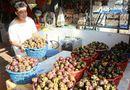Thị trường - Xuất khẩu rau và trái cây năm 2016 vượt 2,1 tỷ USD