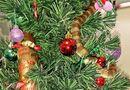 Sức khoẻ - Làm đẹp - Phát hiện rắn độc cuộn tròn trên cây thông Noel giống như đồ trang trí