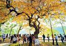 5 địa điểm chụp ảnh lãng mạn ở Hà Nội thu hút giới trẻ nhất
