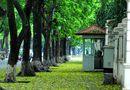 Top 5 địa điểm chụp ảnh mùa thu ở Hà Nội đẹp đến nao lòng