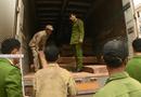 An ninh - Hình sự - Ngụy trang gỗ quý dưới xe chở nông sản để qua biên giới