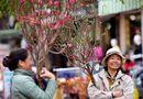 Tin trong nước - Dự báo thời tiết kỳ nghỉ Tết Nguyên đán tại 3 miền