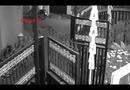 Video-Hot - Người đàn ông trộm xe máy nhanh như chớp