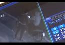 Video-Hot - Hai thanh niên lẻn vào cửa hàng trộm gấu bông trước Lễ tình nhân