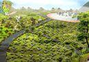 Tin trong nước - Hà Nội sẽ xây dựng công viên nghĩa trang rộng gần 10ha