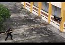Video-Hot - Đặc nhiệm Việt leo nhà 3 tầng bằng một cây tre như Ninja