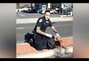 Video-Hot - Video cảnh sát Mỹ truy đuổi nghi phạm gây sốt