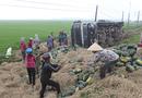 Tin trong nước - Xe tải chở 20 tấn dưa lật xuống ruộng, người dân xúm vào nhặt giúp