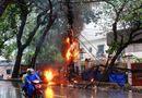 Tin trong nước - Cột điện bùng cháy dữ dội giữa trời mưa nặng hạt