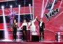 """Giọng hát Việt 2017: Thu Minh chọn giọng ca \""""phi giới tính\"""" Tùng Anh đi tiếp"""
