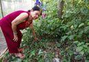 Tin trong nước - Bé trai sơ sinh bị bỏ rơi trong vườn