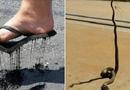 """Đời sống - Những trải nghiệm """"thiên nhiên hoang dã"""" khi bạn đặt chân đến nước Úc"""
