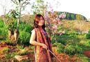 Tin trong nước - Kỷ luật nữ Phó Giám đốc Sở bẻ hoa anh đào