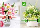 Cộng đồng mạng - Chỉ cần nắm được 9 mẹo nhỏ, những bông hoa trong nhà bạn lúc nào cũng tươi